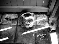 Gogol pdf ebook