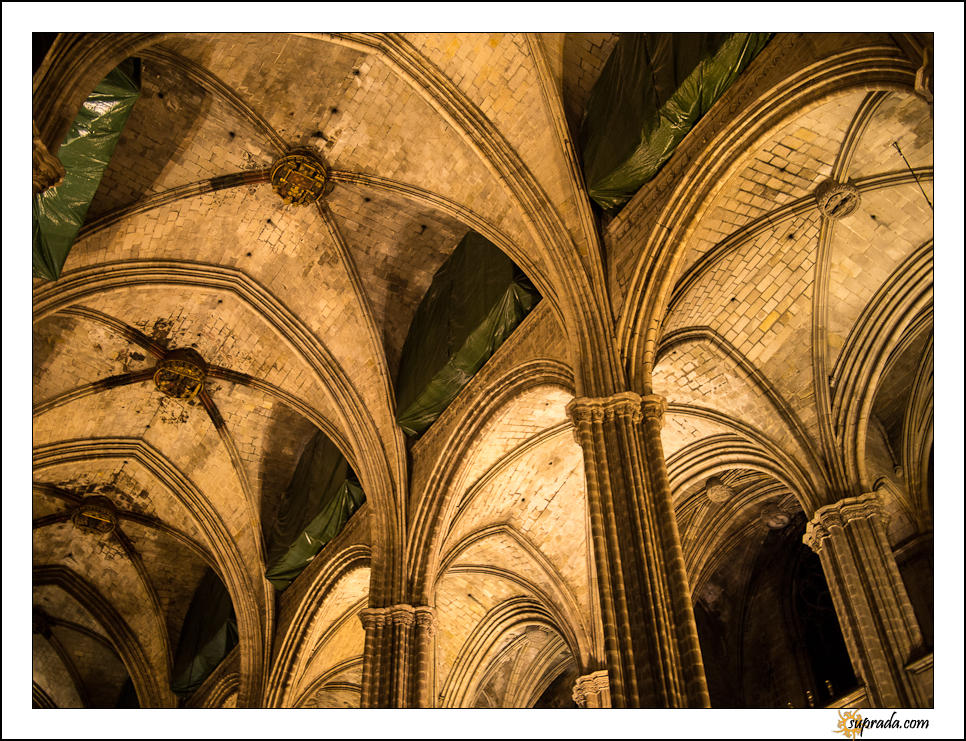 Gothic Cathedral - Barcelona