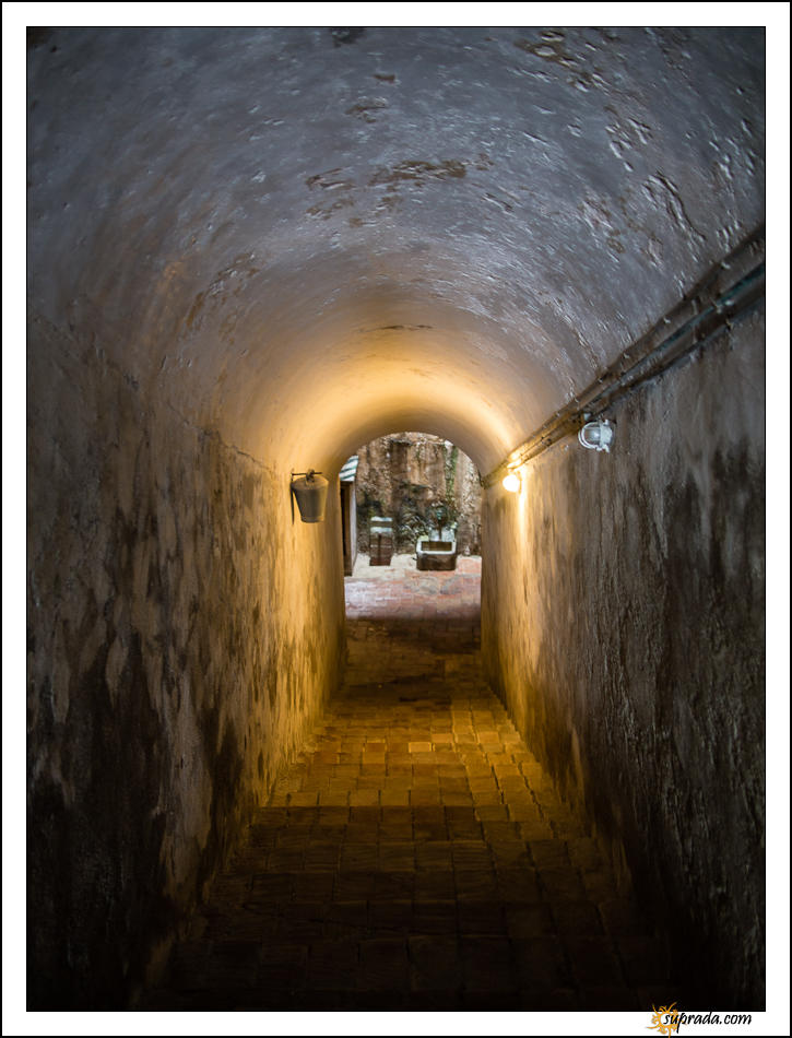 Down the cellar - Monastir de Pedrables